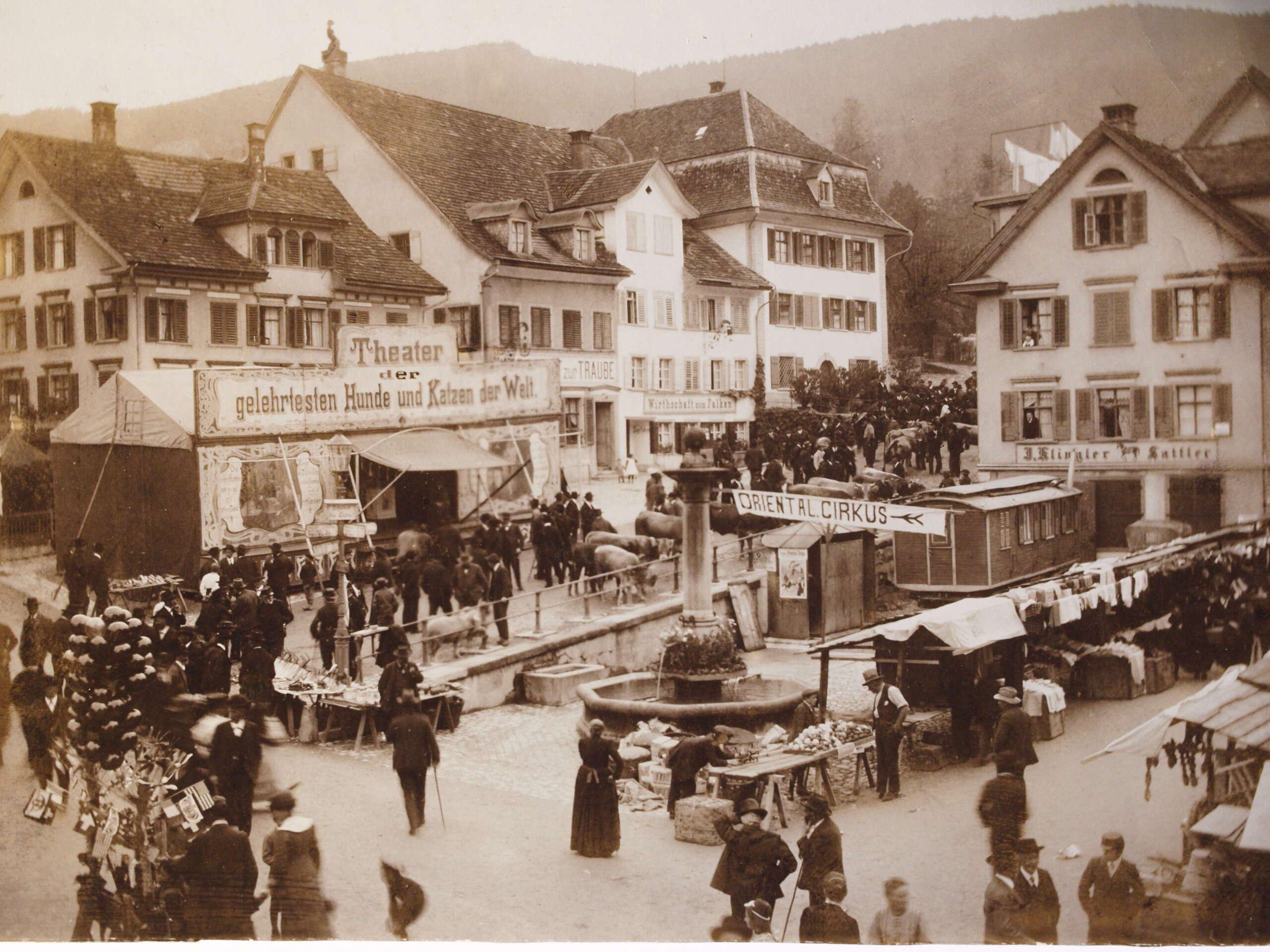 Vollstndige Beschreibung des Schweizerlandes: Oder